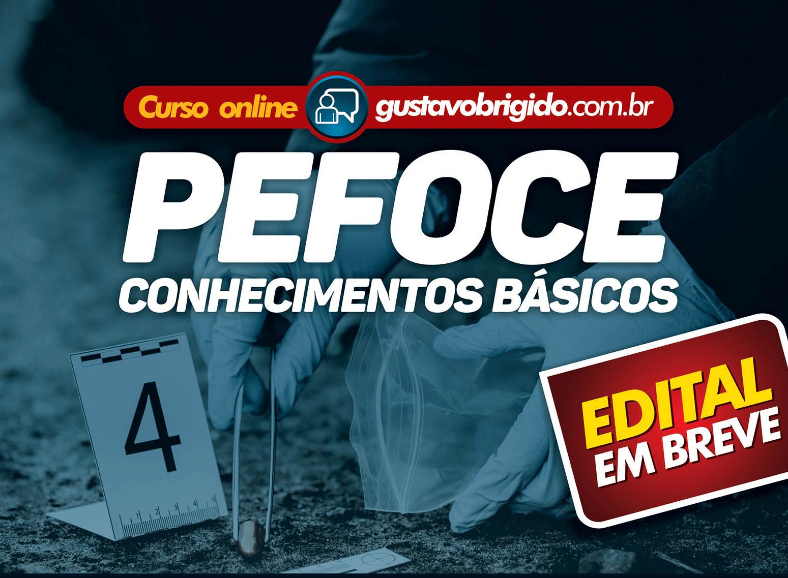 PEFOCE - CURSO COMPLETO PARA A PERÍCIA FORENSE DO CEARÁ